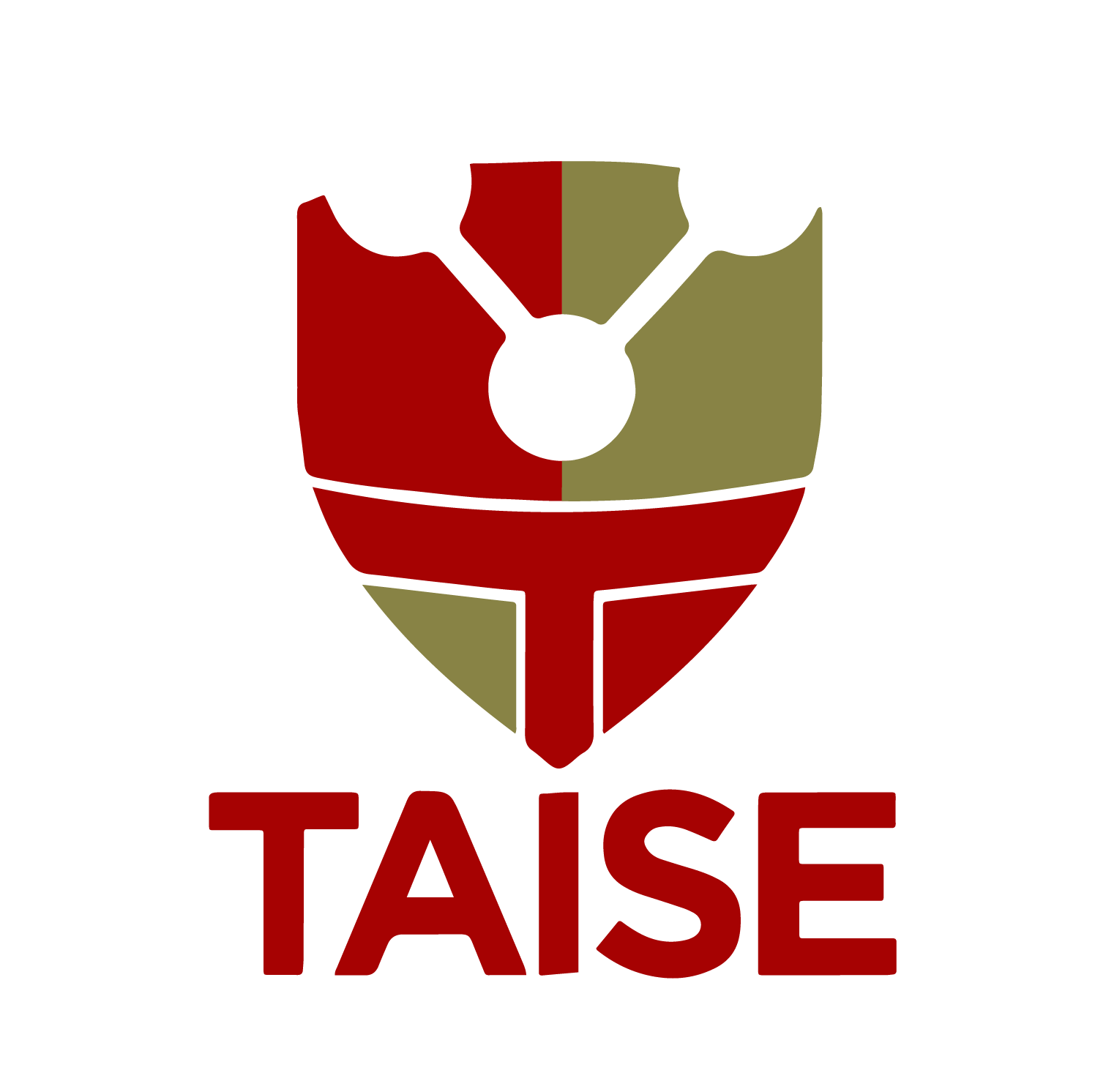 TAISE – Tactical Intelligence Security